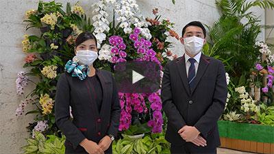 JALグループ沖縄地区「安全・安心」の取り組み
