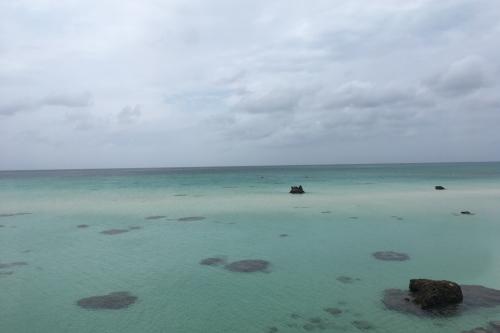 する 由来 名前 島 の に 珊瑚